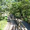 Paignton : Paignton Zoo, Railway & Path
