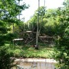 Paignton : Paignton Zoo, Orangutan Enclosure