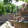 Paignton : Paignton Zoo, Baboon Rock