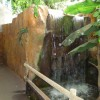 Paignton : Paignton Zoo, Waterfall
