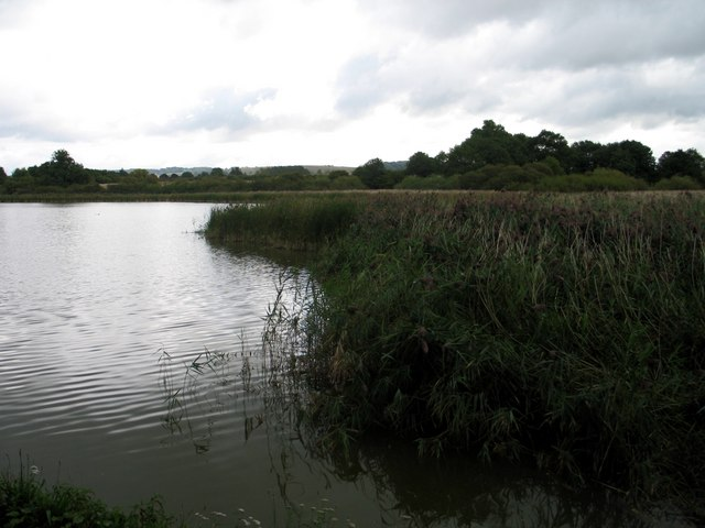 Marsworth Reservoir, Tring