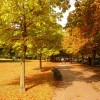 Greenwich: an autumny feel in Greenwich Park