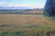 Harvested wheat field near Ravenstone Road