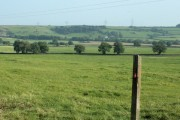 South east from Codrington