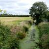 Rhyne near Pawlett Somerset