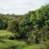 River Mole, Westhumble, Surrey