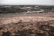 Beach, east of Arbroath