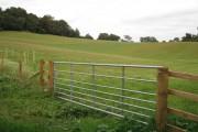 Field below Eastdon Wood