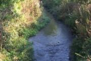 River Lesser Teise