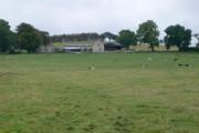 Bedlwyn Farm