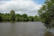 Lodge Pond, Alice Holt Forest