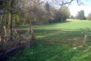Farmland at Docklow Manor