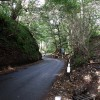Glen Road at Dullatur
