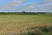 Farmland to the N of Crete Road West