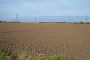 Farmland near  Swine