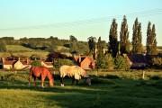East Tytherton, Wiltshire