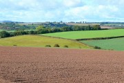 Colour Fields; Herefordshire farmland in October