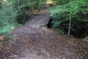 Bridge over Chalybeate Spring in Kidbrooke Wood