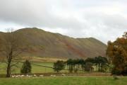 Farmland and hillside, Cademuir