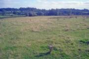 Farmland south of Greasley