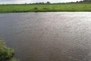 River Derwent near  Ellerton ings