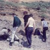 Fossil hunting at Barton-on-Sea