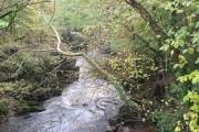 Afon Dyfi looking south from minor road bridge