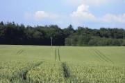 Farmland, Burkham