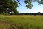 Pasture, Binfield