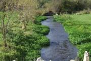 River Windrush and sluice gate