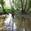 River Windrush at Kineton