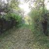 Footpath crossing old railway bridge