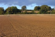 Ploughed field, Whittington