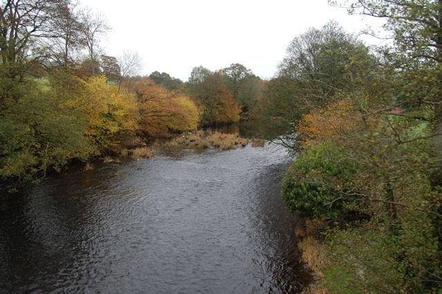 Afon Banwy in autumn