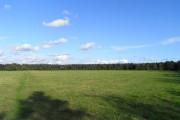 Pasture, Ufton Nervet