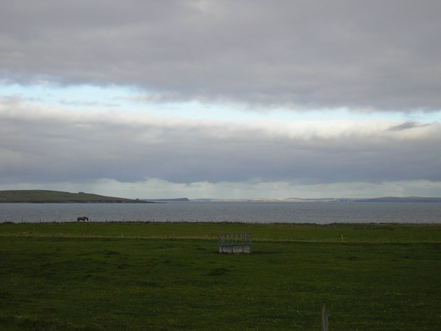 Rough Pasture, Ness of Quoys