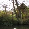 Riverside plot, St Mary's allotments