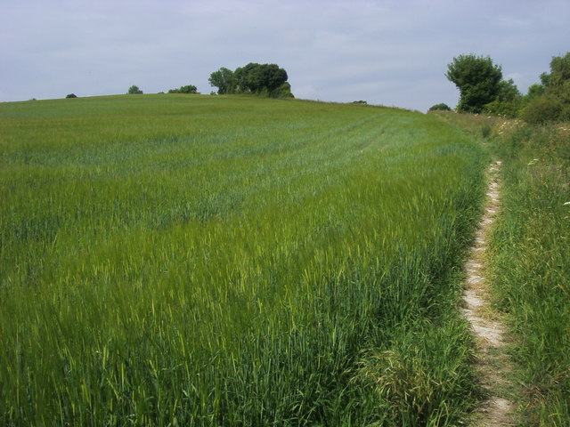Footpath to Stubbing's Wood