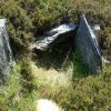Possible old burial site