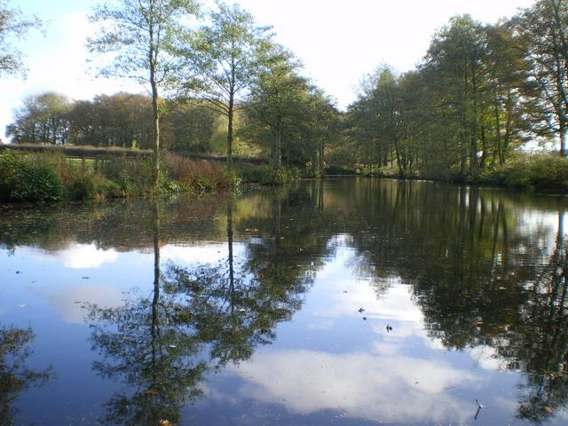 Lake near Brailsford Hall