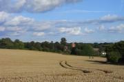 Farmland, Aldworth