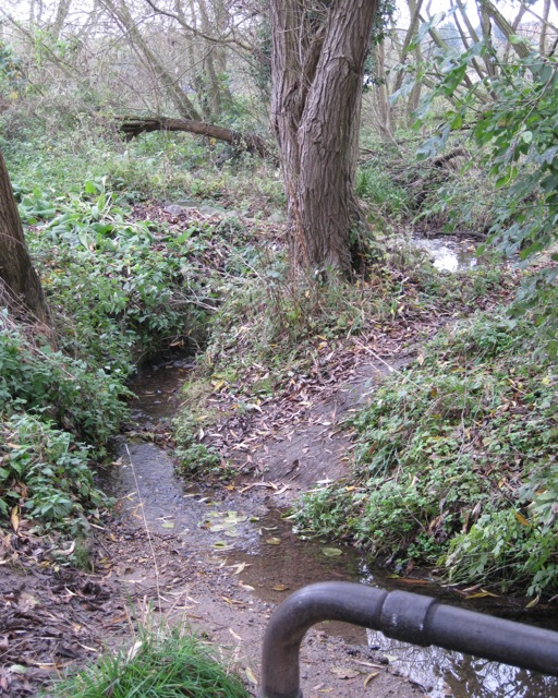 Stream on northern boundary of Saxon Meadows estate, Leamington Spa