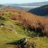 Eastwards from the summit of Knockfarrel