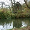 Allotments beside the River Leam, Newbold Comyn Park