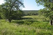 Farmland, Culeave
