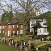 The Red Lion Inn at Shamley Green