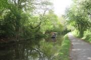 Canal at Pontnewydd