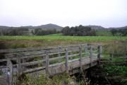 Bridge crossing stream near Lady Glassary Wood