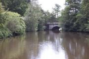 Bridge, Savill Gardens