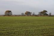 Farmland near Norton Little Green